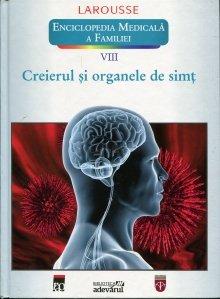Creierul si organele de simt