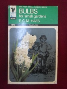Bulbs For Small Gardens