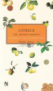 Citrice de apartament