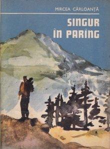 Singur in Paring