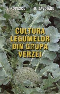 Cultivare legumelor din grupa verzei