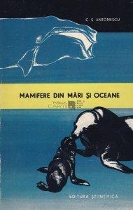 Mamifere din mari si oceane