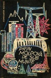 Prin Moldova de sub munte