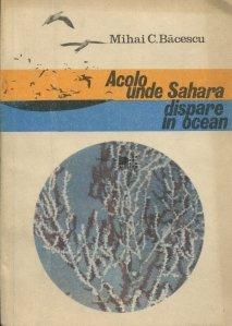 Acolo unde Sahara dispare in ocean
