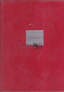Sistemele informatice, modele ale conducerii si sistemelor conduse
