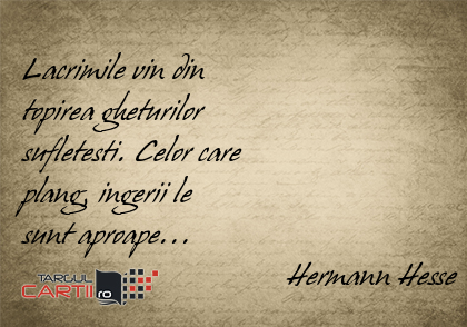 Lacrimile vin din  topirea gheturilor  sufletesti. Celor care  plang, ingerii le  sunt aproape...                                   Hermann Hesse